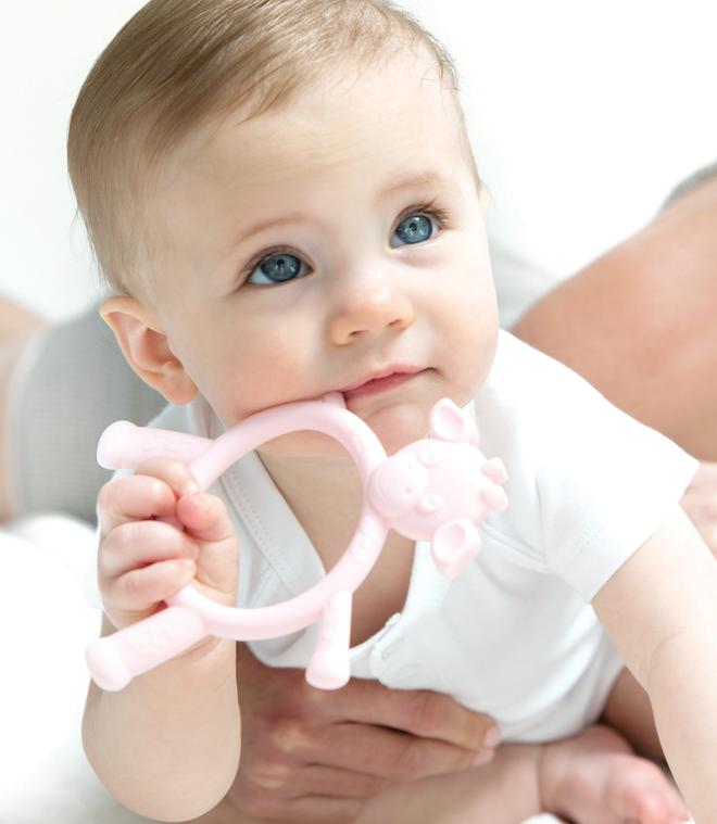 Baby Teething Toys : Little g baby teething toy toys