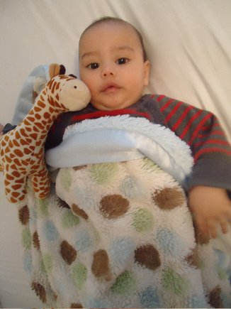 This little guy, Austin, loves his Spotted Luxe blanket! He is so happy & content when he has his blanket!