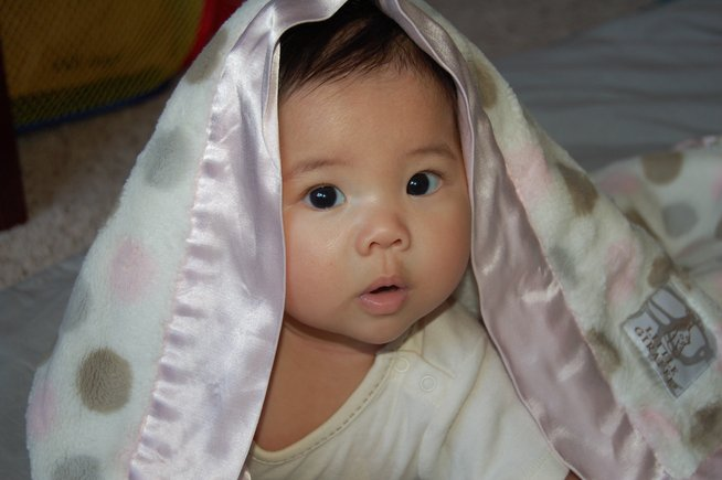 Here's adorable Elsie, wrapped in her cozy Luxe Dot blanket!